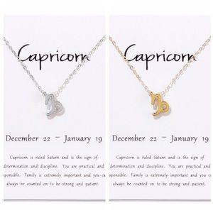 Capricorn ♑️ Zodiac Sign Necklace